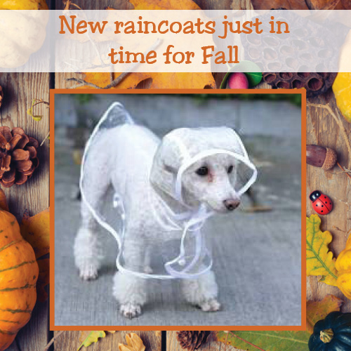 new fall raincoats for dogs