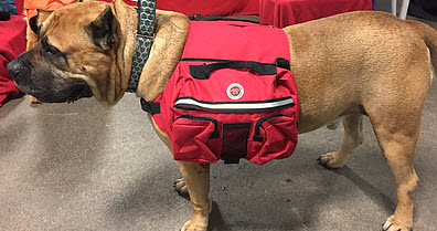 Big Dog Saddle Backpacks 2 Hefty Hounds