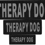 n0211_therapy_dog_1