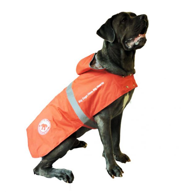 coats for large dogs