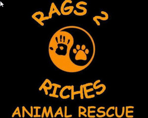rags to riches rescue media pa