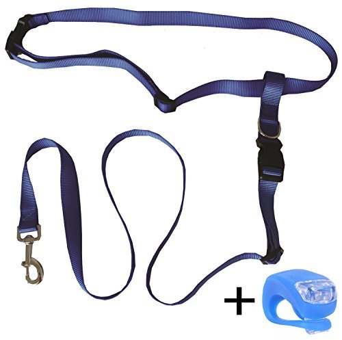 dog leash hefty hounds