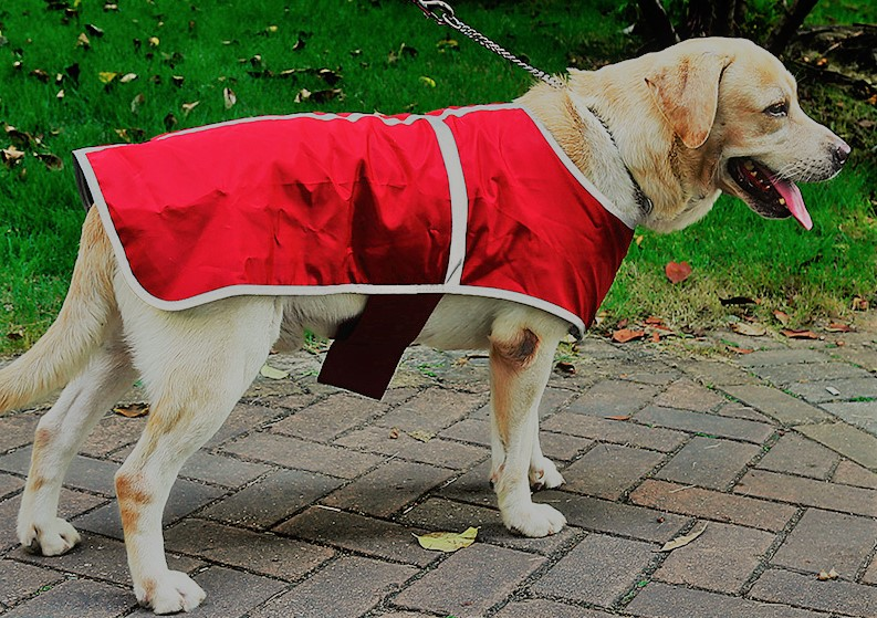 reversible cold weather coat for dogs 3