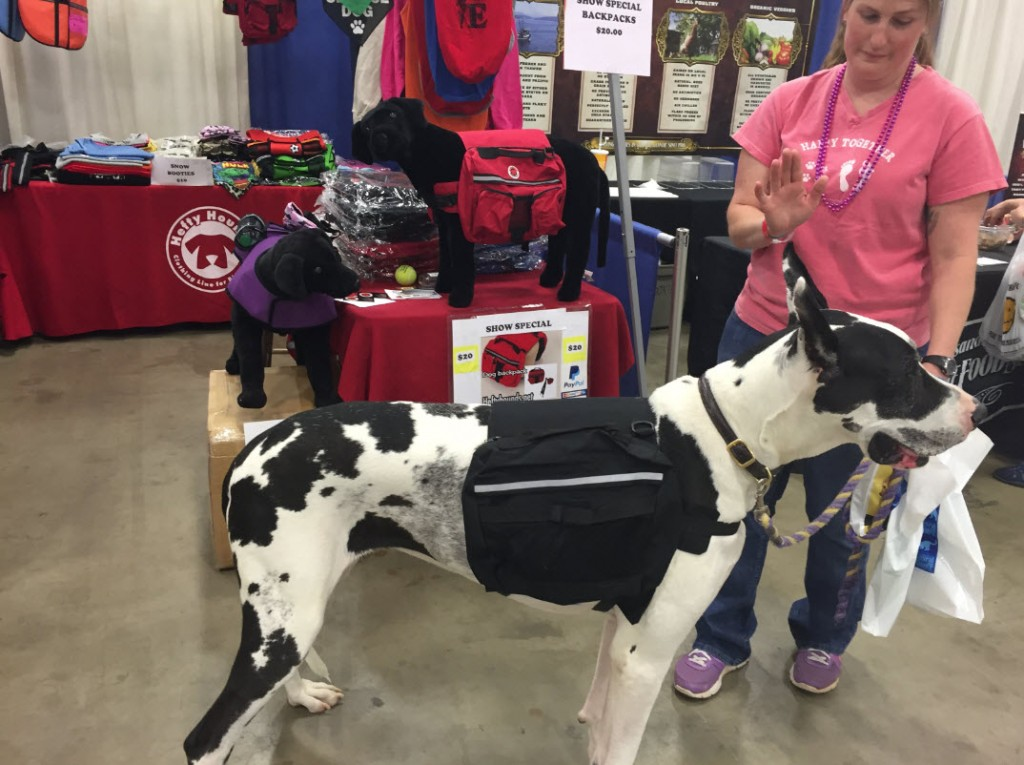 Chantilly Pet Expo - Hefty Hounds