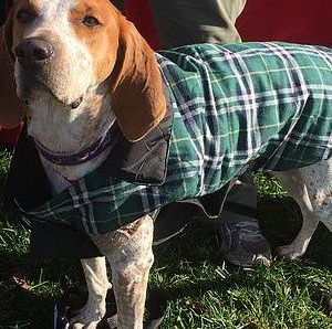 reversible plaid coat with deep chest green plaid with black Reversed