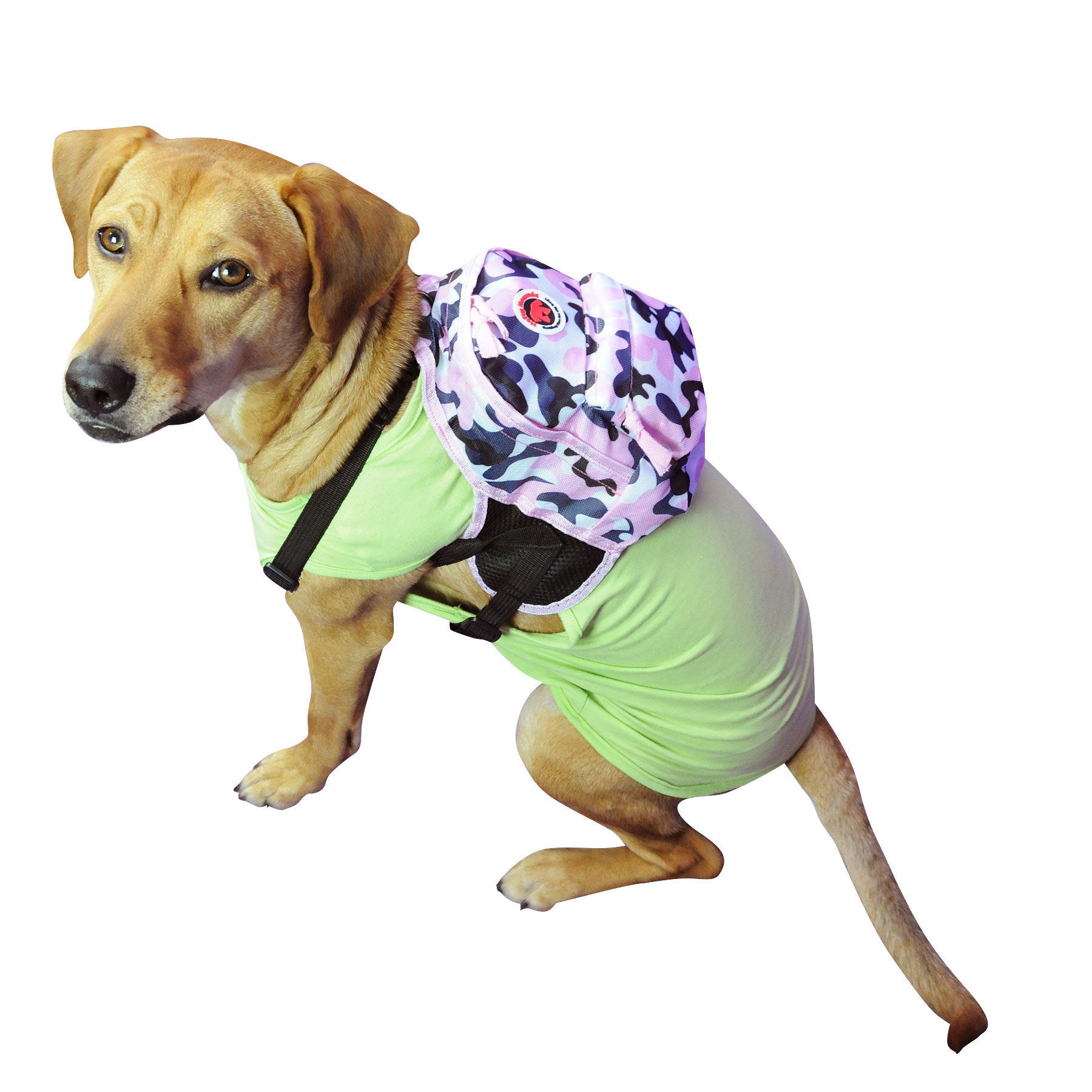 camo backpack for dogs