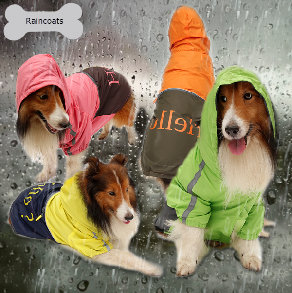 big dog raincoats