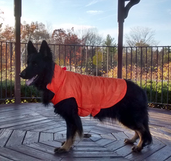 coats-for-dogs-hefty-hounds