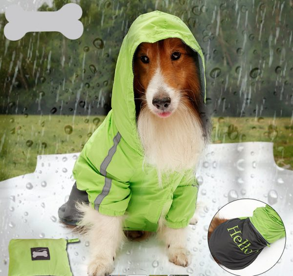 rain-coat-for-dogs