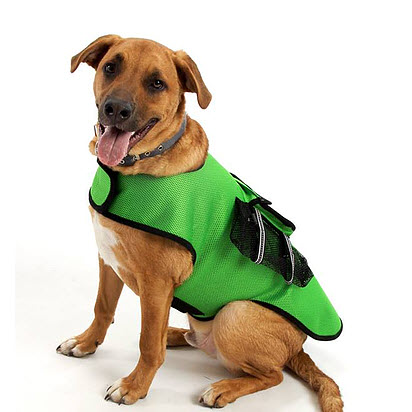 sporting vest for big dogs