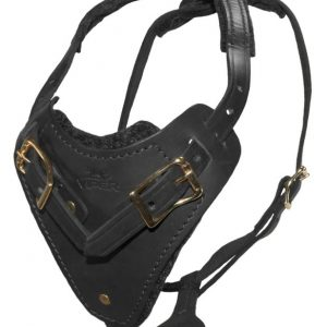 Viper leather dog harness black Invader
