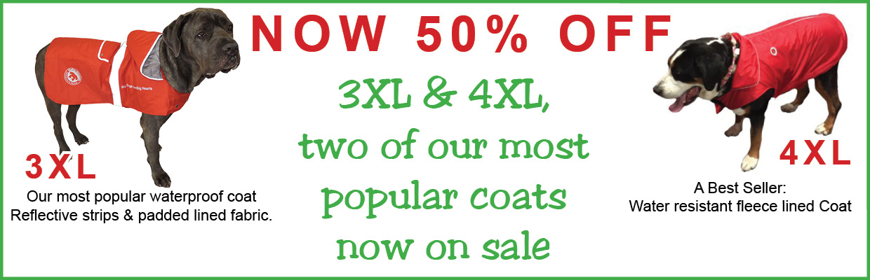 aug 2018 50 off 3xl and 4xl coat sale