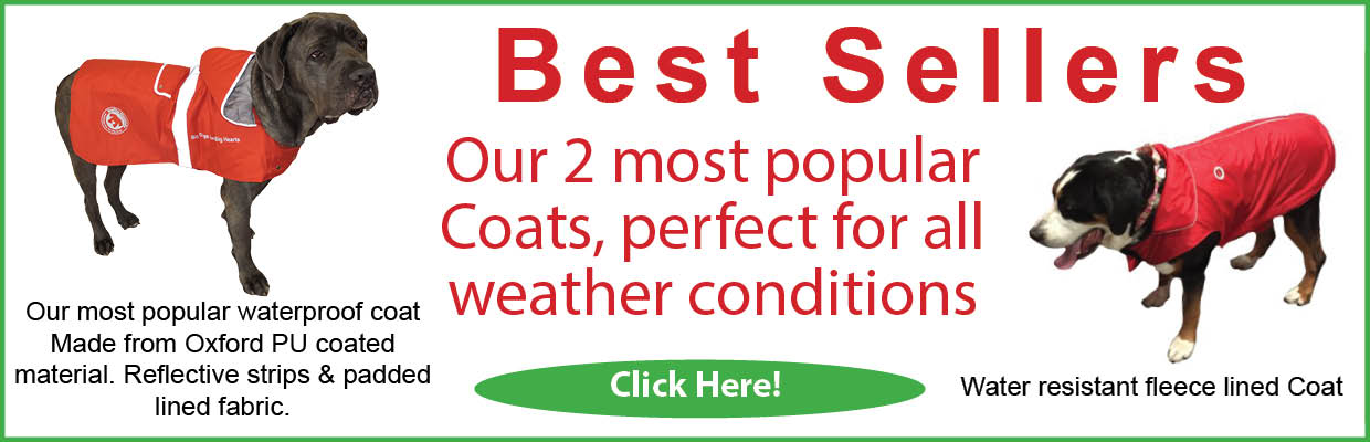 best sellers coats