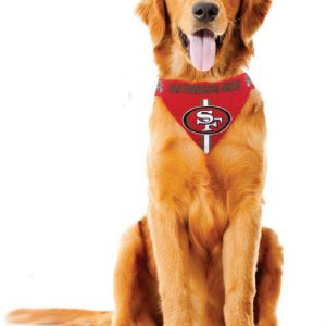 NFL dog bandanna