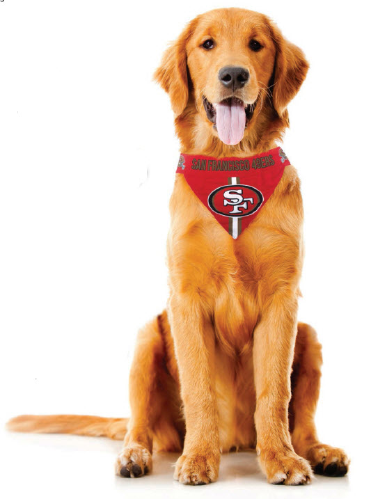 2cd87e121726 NFL Dog Bandanna - Hefty Hounds | Large Dog Clothing & Accessories